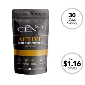 CEN Active Dog Joint Supplement