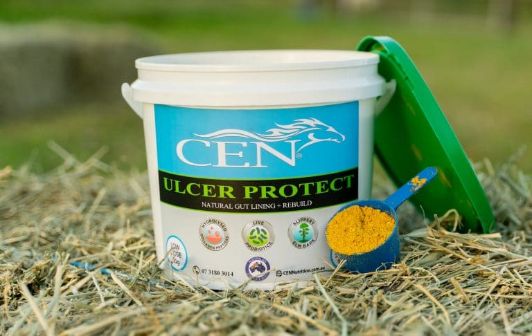 CEN ULCER PROTECT