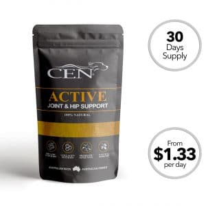 CEN Active