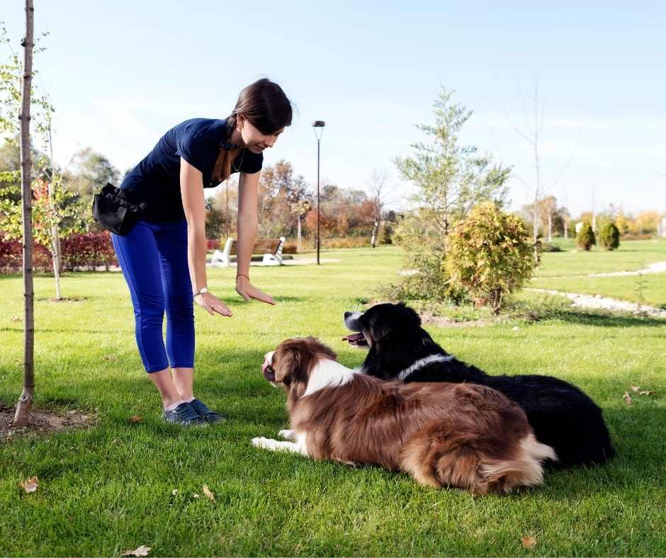 Behavioural training CEN Nutrition
