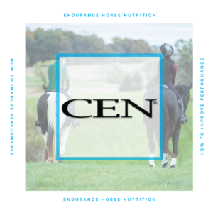 Episode 17   ENDURANCE HORSE NUTRITION - How To Improve Performance