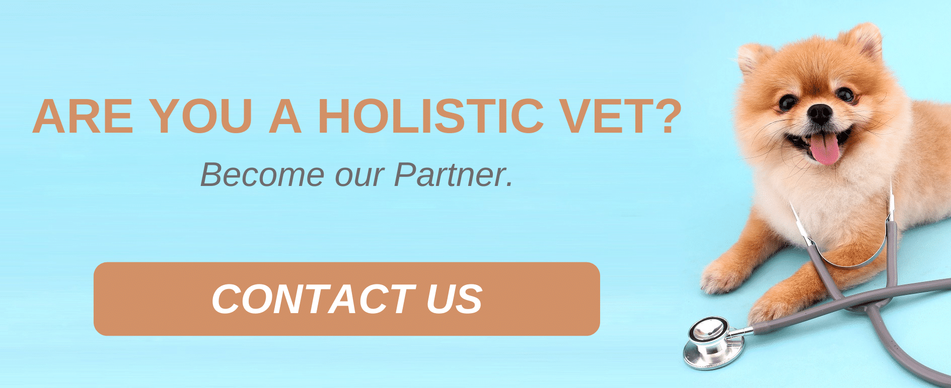 ARE YOU A HOLISTIC VET_ Become our Partner.
