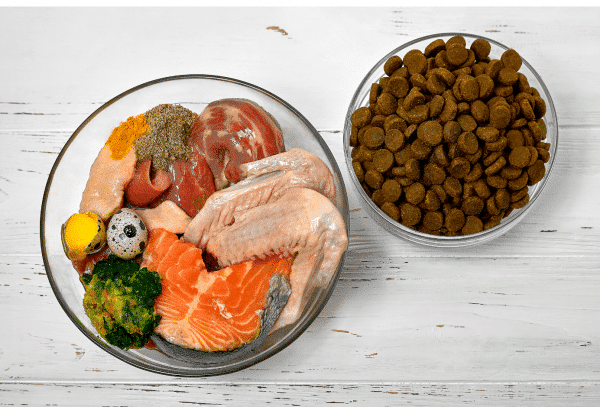 IF I FED MY DOG KIBBLE FOR YEARS, IS IT SAFE TO SWITCH TO RAW CEN Nutrition