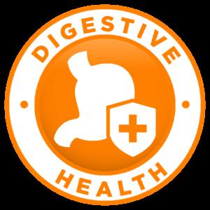 DigestiveHealthIcon
